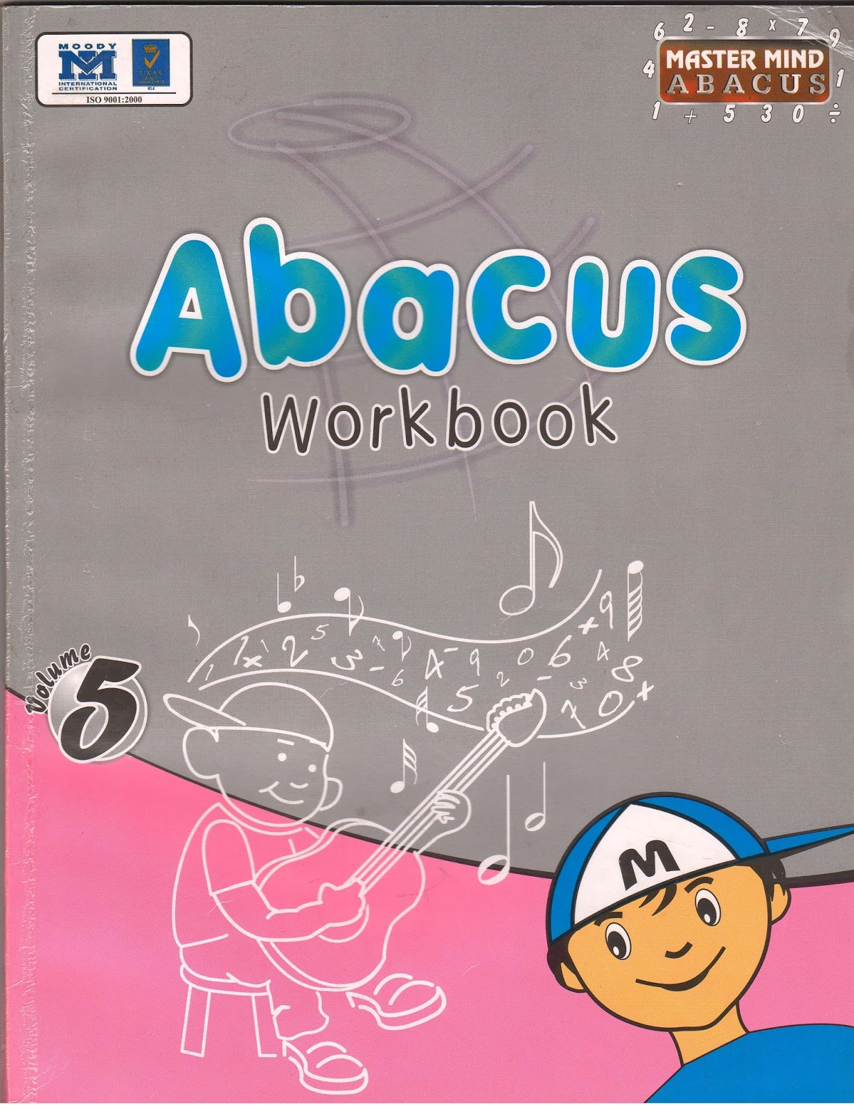 1380547785Abacus5LevelFront5f231ce02424d2bac8c9ee6c8665e246.jpg
