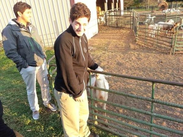 Zac Cohn on a Farm