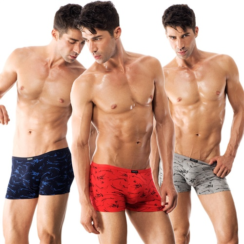 Men's Designer Underwear Versus High Street Chain Underclothing ...boys underwear