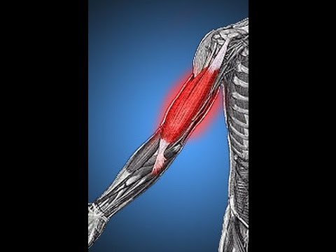 How to get rid of muscle soreness fast:muscle soreness